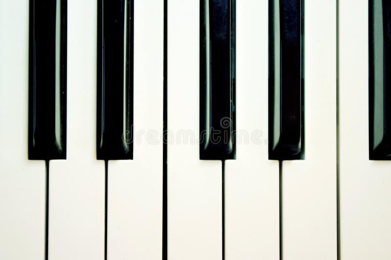 svart tangentbordwhite arkivbild