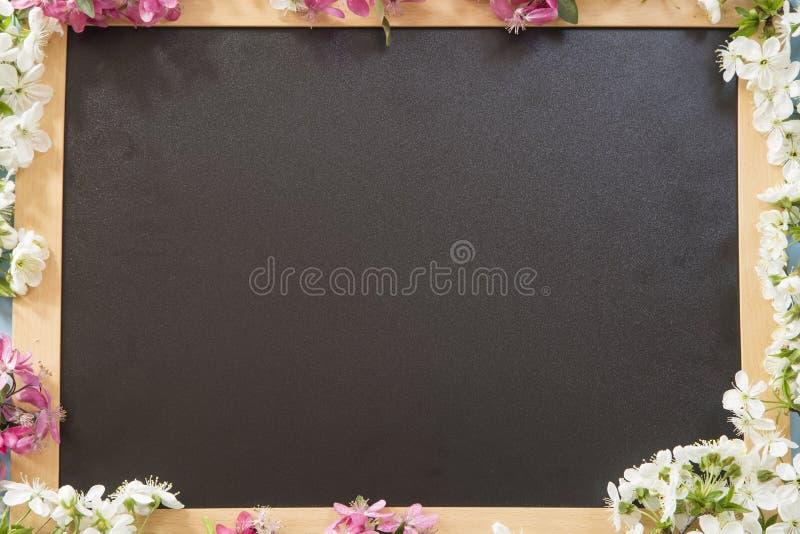 svart tavla royaltyfri fotografi
