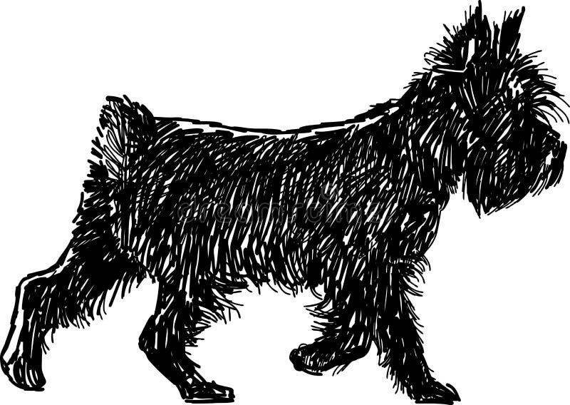 Svart terrier royaltyfri illustrationer