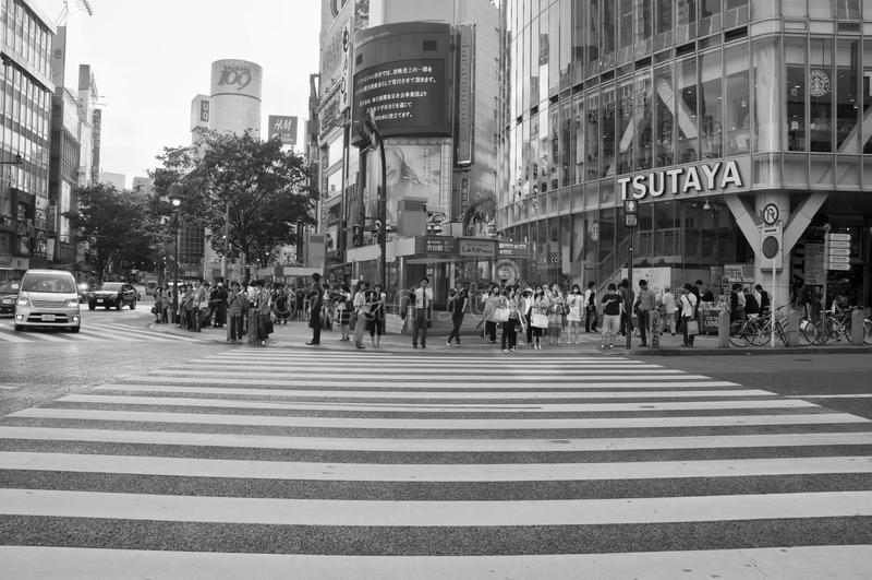 svart tokyo för crossingfotografishibuya white royaltyfri bild
