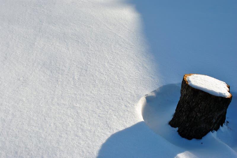 Svart trädstämpel som täckas med snöskuggor i vit snö royaltyfri bild