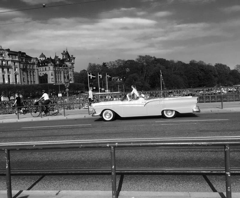 svart vit för sommar royaltyfri foto