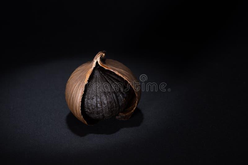 svart vitlök royaltyfri foto