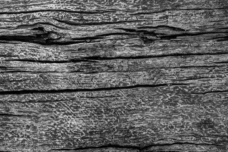 Svart wood texturbakgrund med utrymme fotografering för bildbyråer
