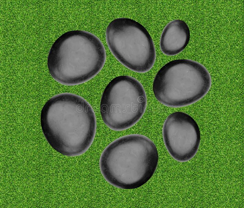 Svarta brunnsortstenar över grönt gräs arkivbilder