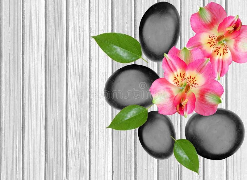 Svarta brunnsortstenar och rosa orkidé på vitt trä royaltyfri foto