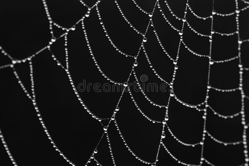 svarta diamanter över royaltyfri bild