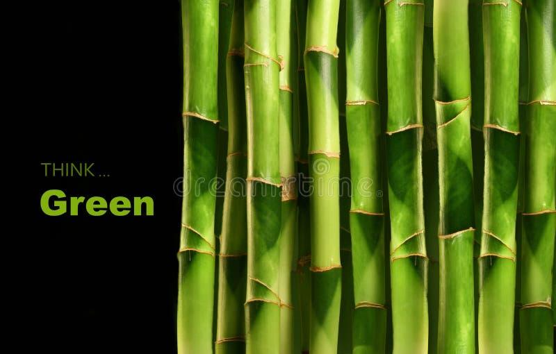 svarta forar för bambu royaltyfri fotografi