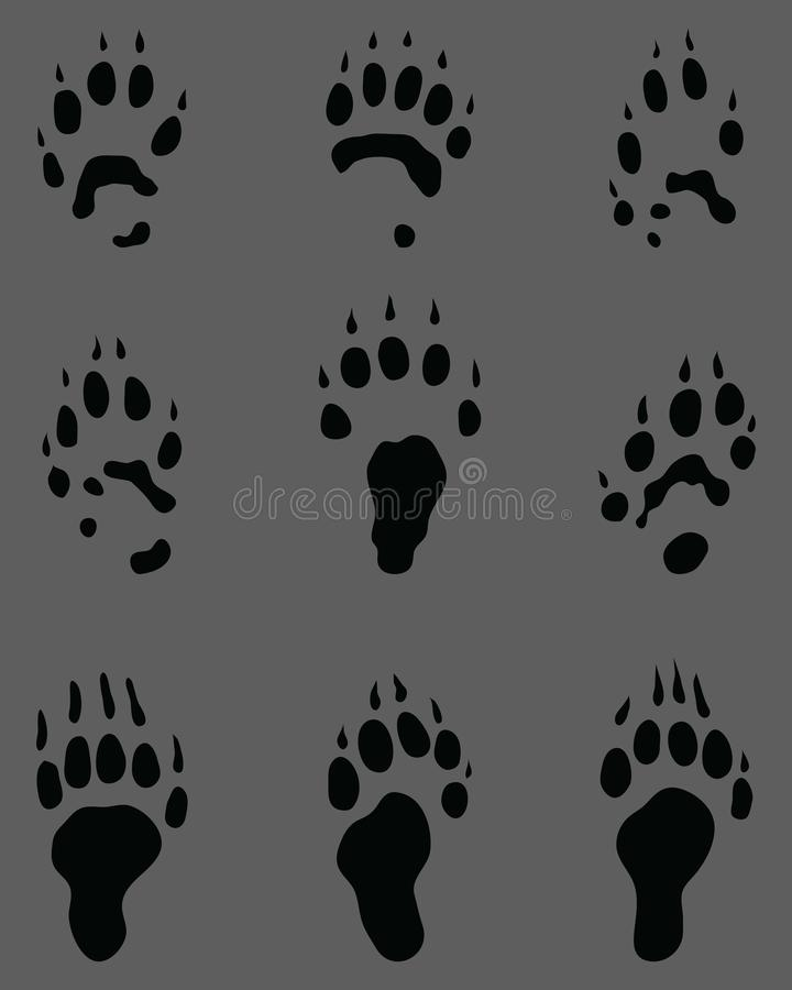 Svarta fotsp?r av iller vektor illustrationer