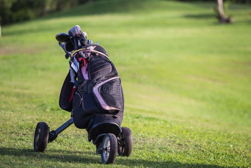 Svarta golfklubbchaufförer på grönt fält royaltyfri bild