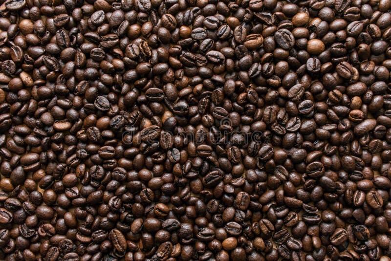 Svarta grillade kaffebönor texturerar bästa sikt royaltyfria bilder