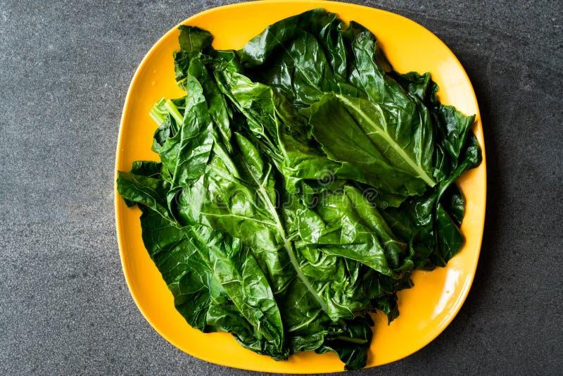 Svarta kålsidor/organisk grön Lacinato grönkål på den gula plattan med Grey Granit Surface arkivfoto