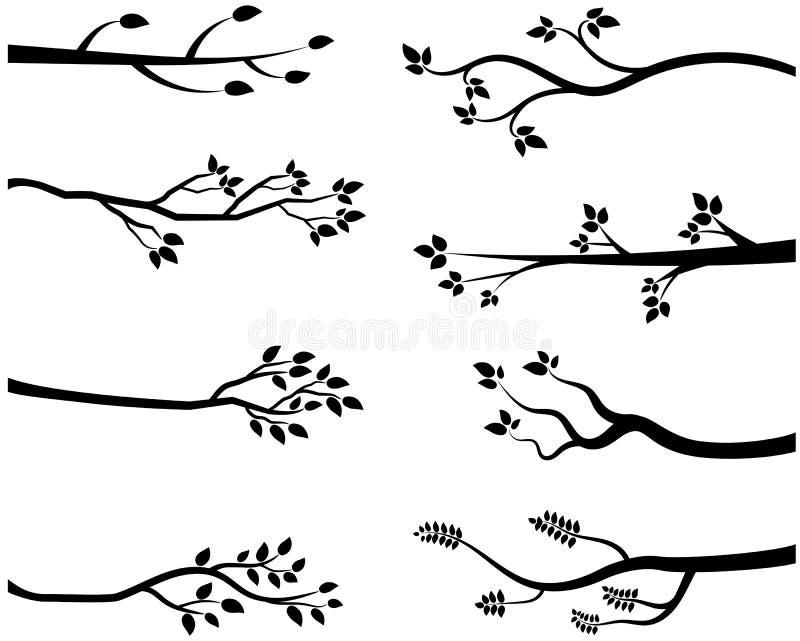 Svarta konturer för trädfilial vektor illustrationer