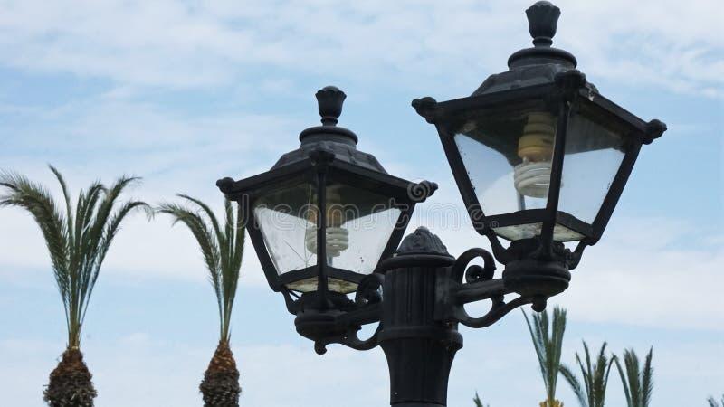 Svarta lyktor på palmträd och blå himmel royaltyfri foto