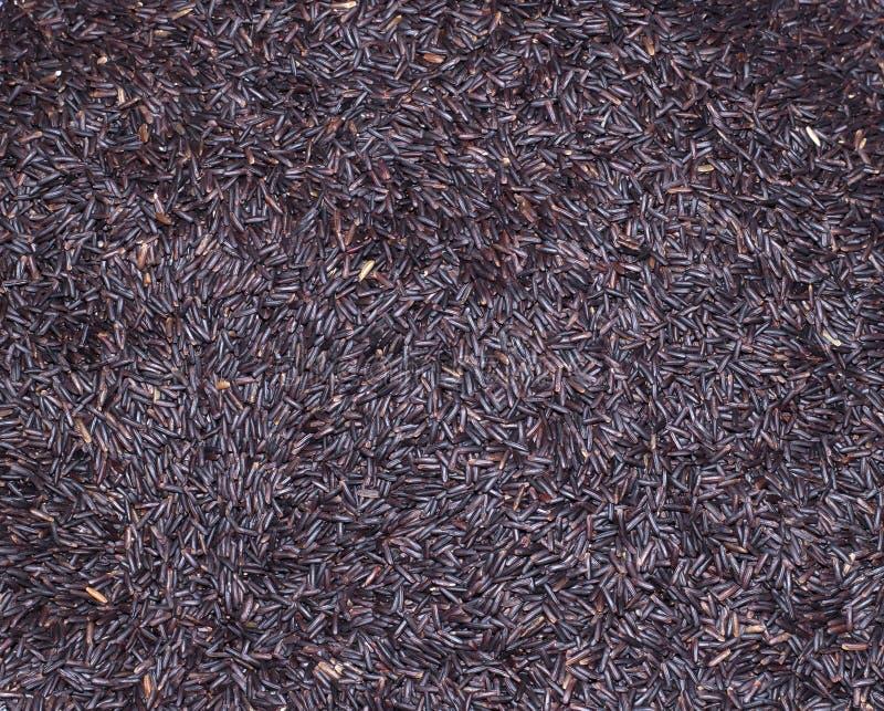 Svarta ris den organiska maten arkivfoto