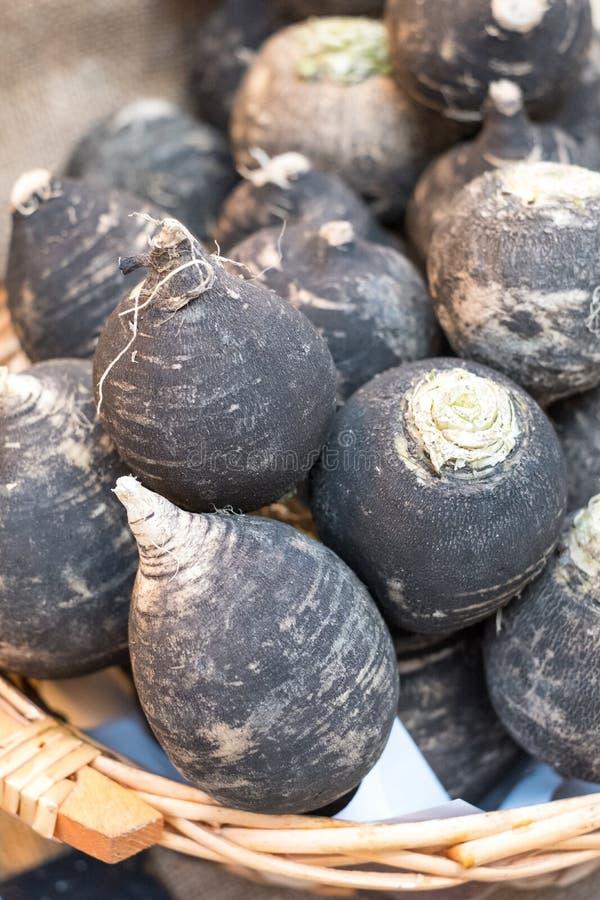Svarta rovor, rapanera, på försäljning på marknaden för Eataly hög-slut mat i Turin, Italien arkivbilder