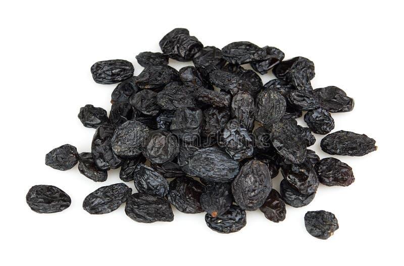 svarta russin royaltyfri bild