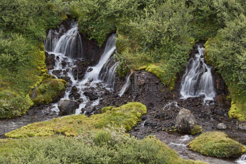 Svartifoss瀑布Skaftafell 免版税库存图片