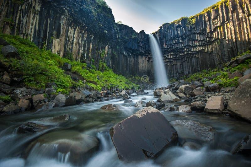 Svartifoss, черный водопад, Исландия стоковое изображение
