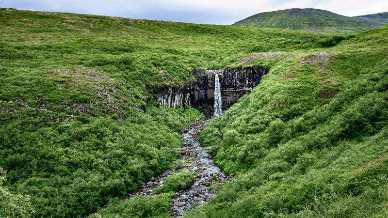 Svartifoss - de iconische waterval van IJsland dichtbij door Vatnajokull stock afbeelding