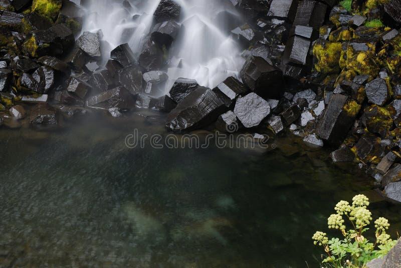 Svartifoss, Iceland Stock Photos