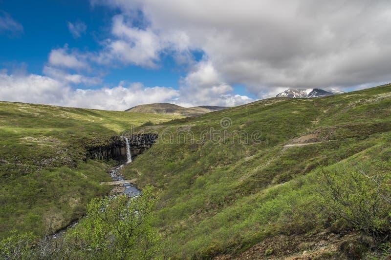 Svartifoss mit Landschaft und Bergen lizenzfreie stockfotos