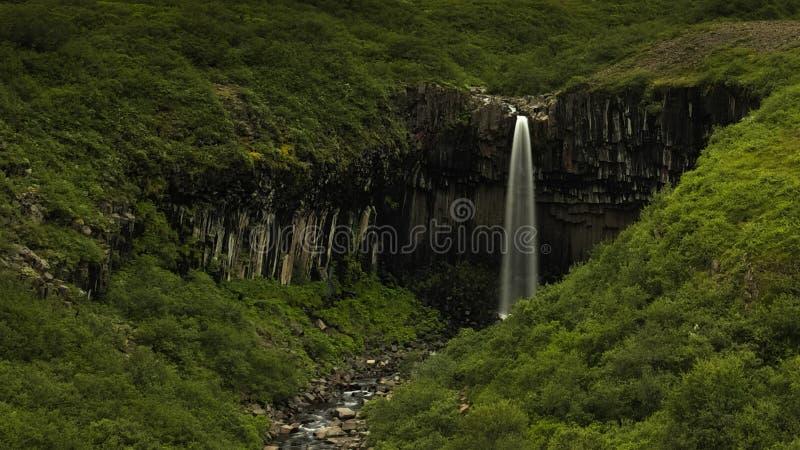 Svartifoss siklawa w Skaftaftafell Iceland zdjęcia royalty free