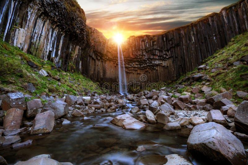 Svartifoss siklawa z bazaltowymi filarami, Iceland obraz royalty free