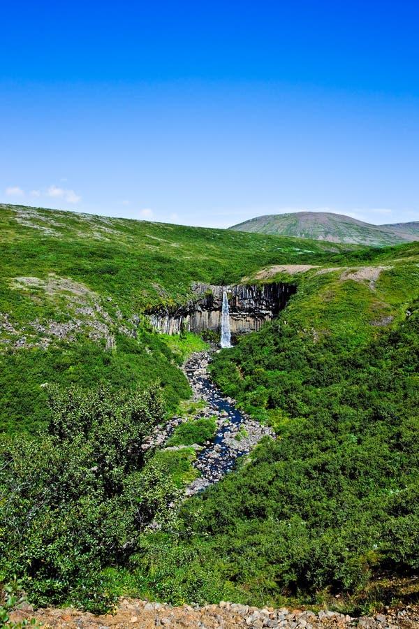 svartifoss skaftafell национального парка Исландии стоковые фотографии rf