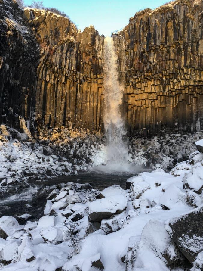Svartifoss vattenfall över den columnar basaltet i vinter, Island royaltyfria foton