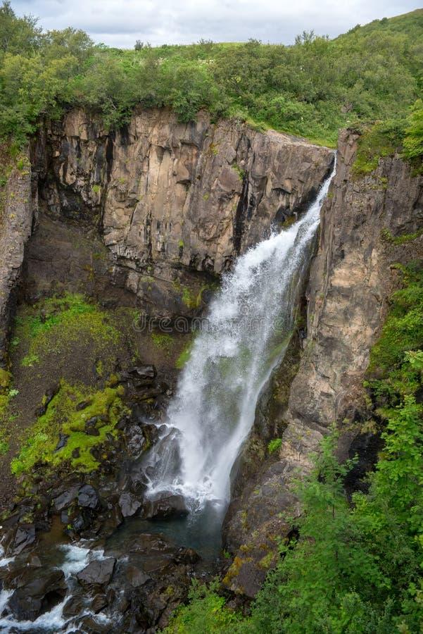 Svartifoss Waterfalls or Balck Waterfall, Vatnajokull National Park on Iceland. Svartifoss Waterfalls or Balck Waterfall, Vatnajokull National Park on Iceland stock images