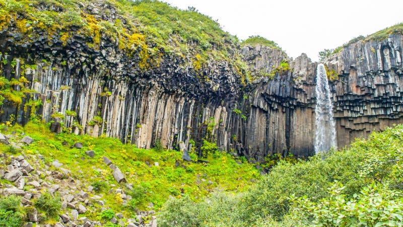 Svartifosswaterval met basaltkolommen, het Nationale Park van Skaftafell, IJsland royalty-vrije stock fotografie