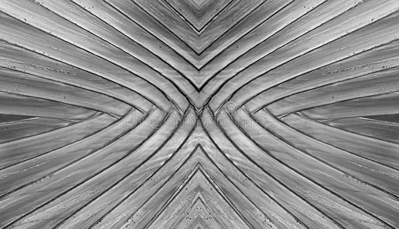 Svartvit bakgrund för abstrakt begrepp för textur för bananväxter arkivfoton