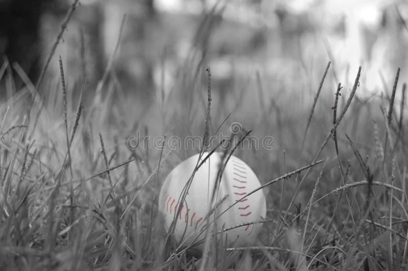 Svartvit baseball arkivbild