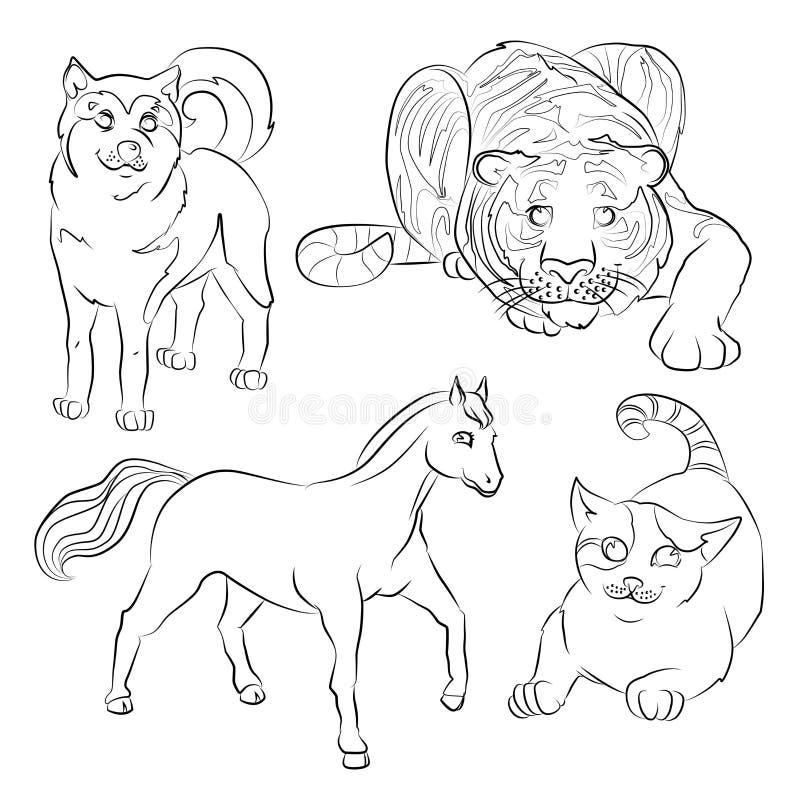Svartvit bild av en katt, en hund, en häst och en tiger stock illustrationer