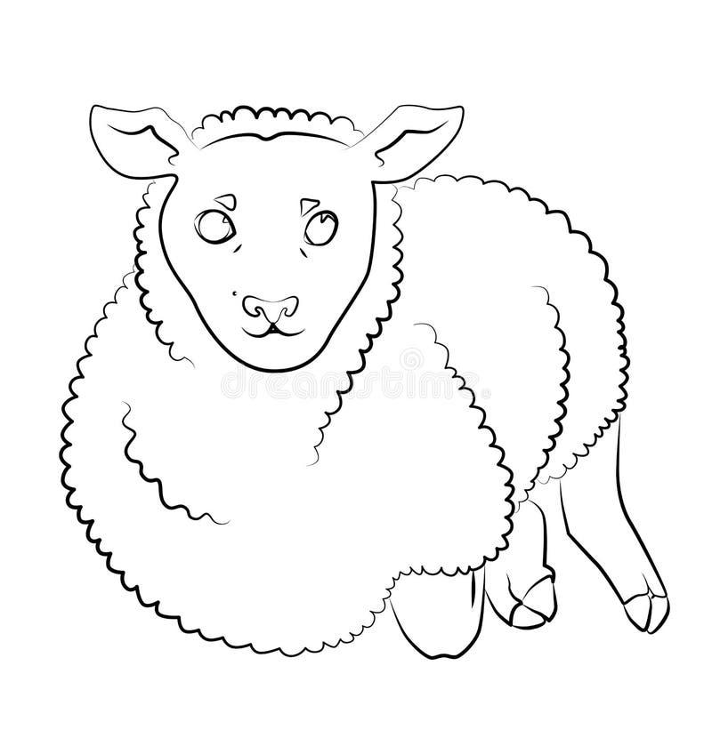 Svartvit bild av ett får vektor illustrationer