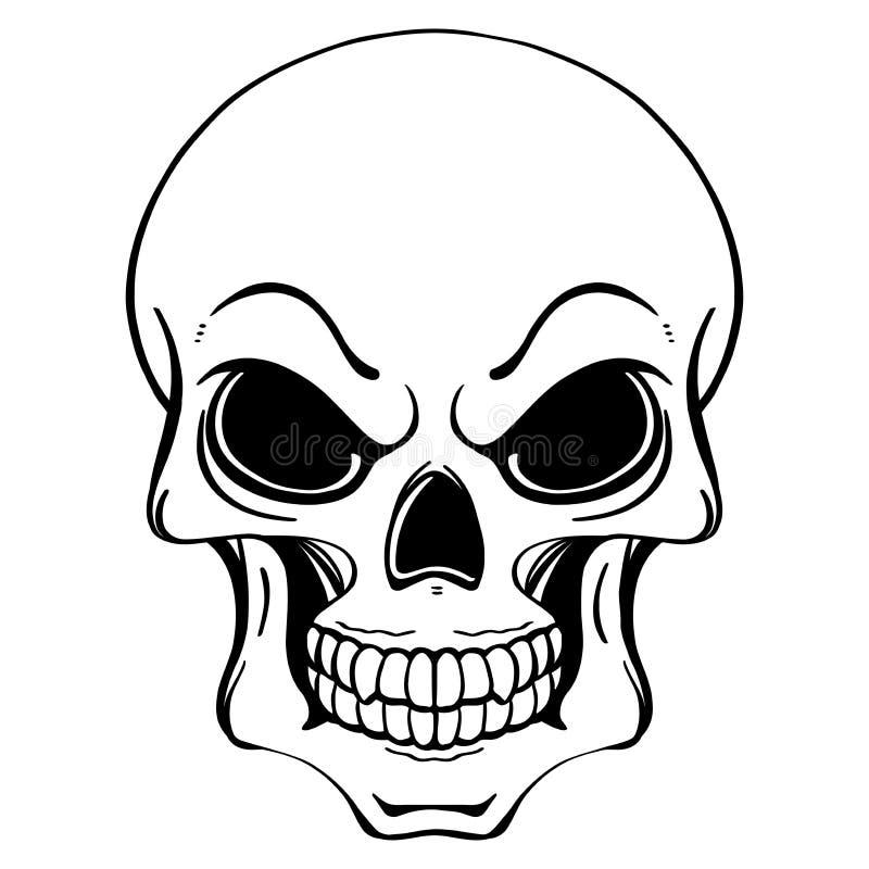 svartvit illustration av den mänskliga skallen i dragen stil för färgpulver hand arkivfoton