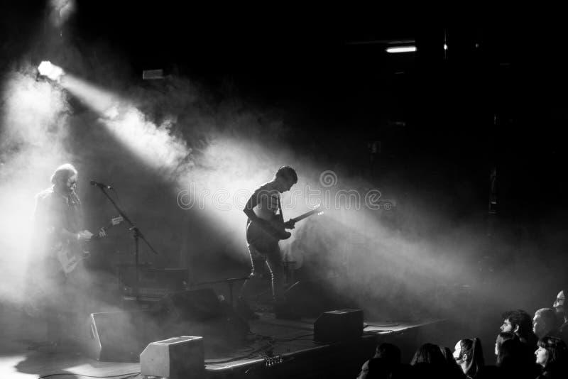 Svartvit konsertgitarrist arkivbilder
