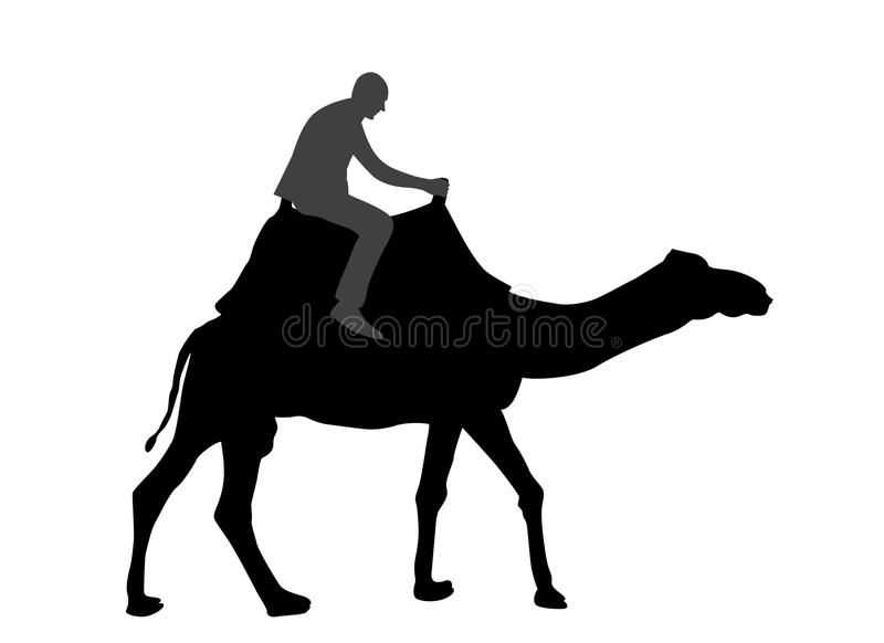 Svartvit kontur av en kamel med en beduin också vektor för coreldrawillustration vektor illustrationer