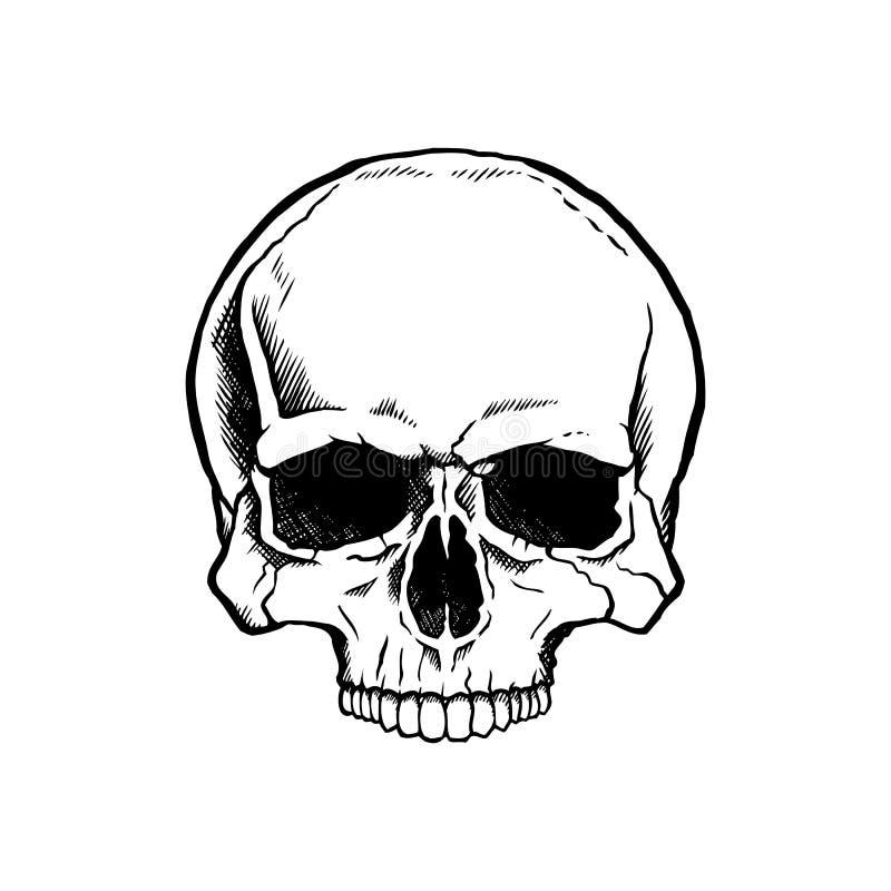 Svartvit mänsklig skalle royaltyfri illustrationer