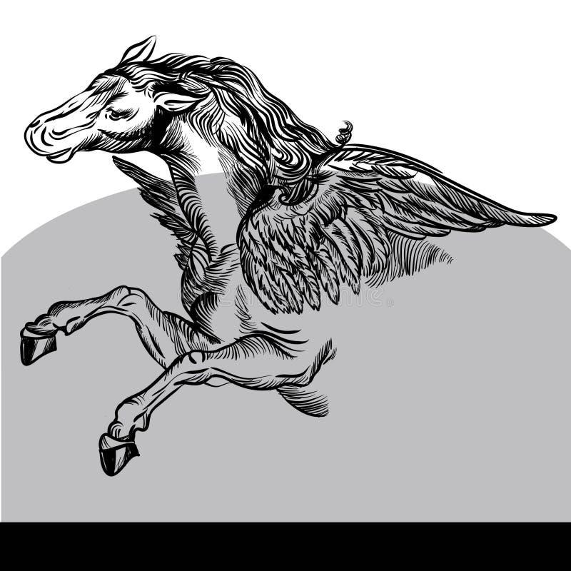 Svartvit Pegasus vektorillustration arkivfoto