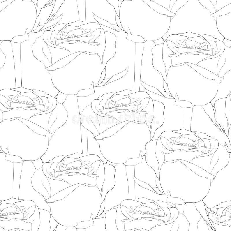 Svartvit sömlös modell i rosor med konturer royaltyfri illustrationer