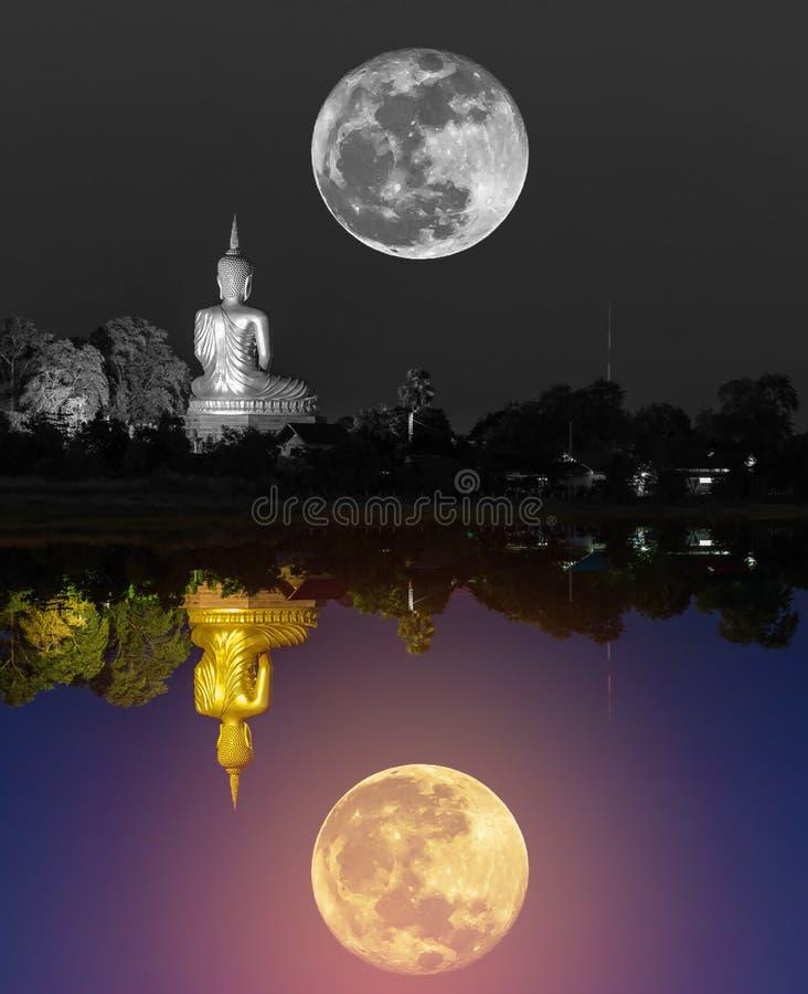 Svartvit stor buddha staty med den toppna månen och färgrik stor guld- buddha statyreflexion arkivbild