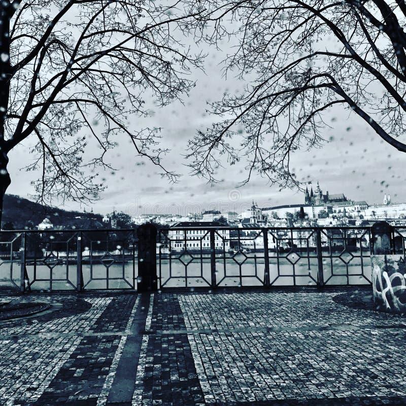 Svartvit Tjeckien för Prague slott arkivbild