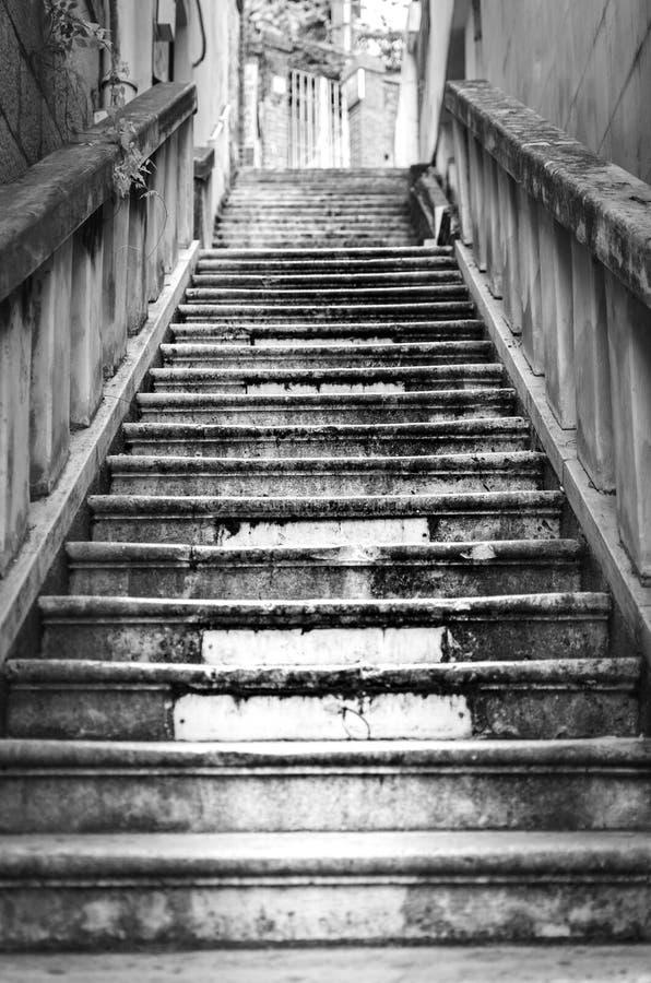 Svartvit trappa arkivbild
