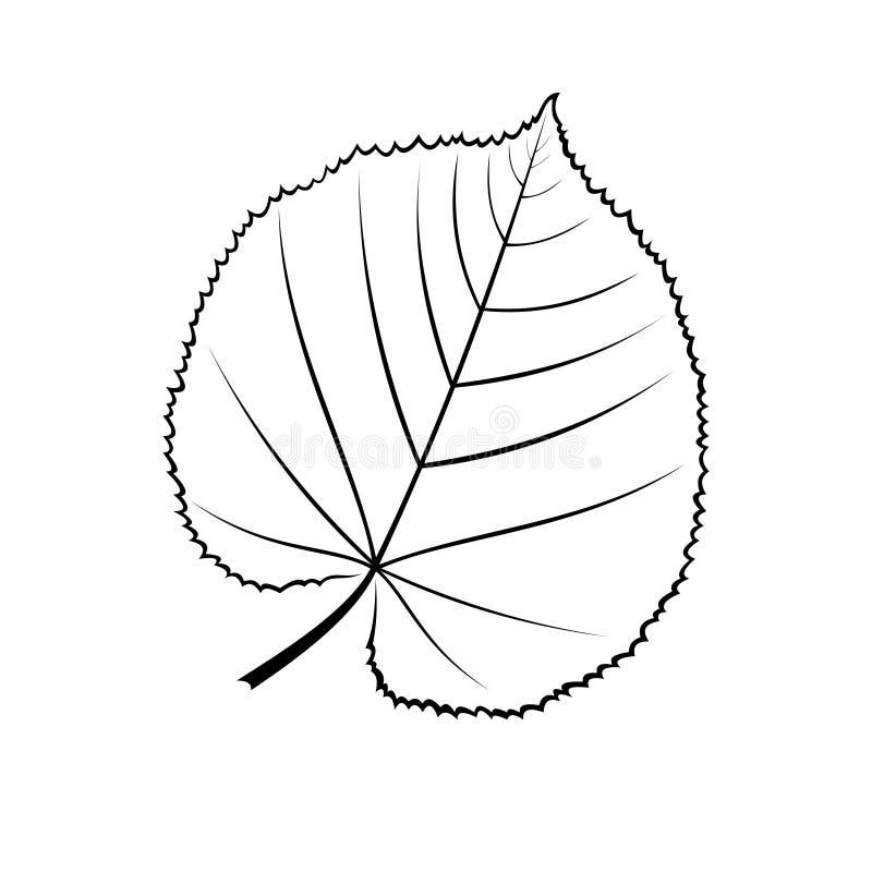 Svartvit vektorillustration av ett blad av linden stock illustrationer
