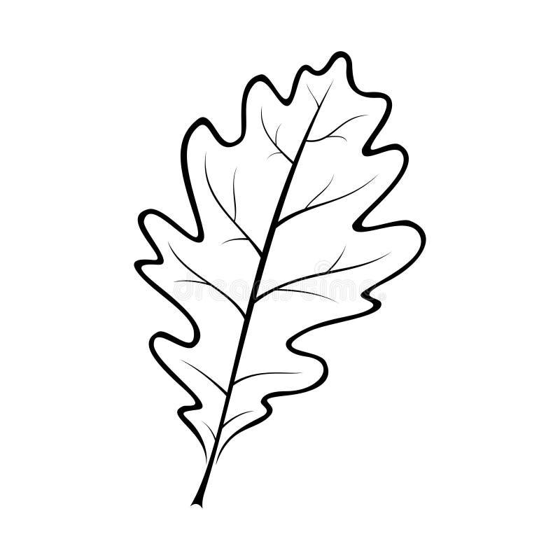 Svartvit vektorillustration av ett ekblad royaltyfri illustrationer