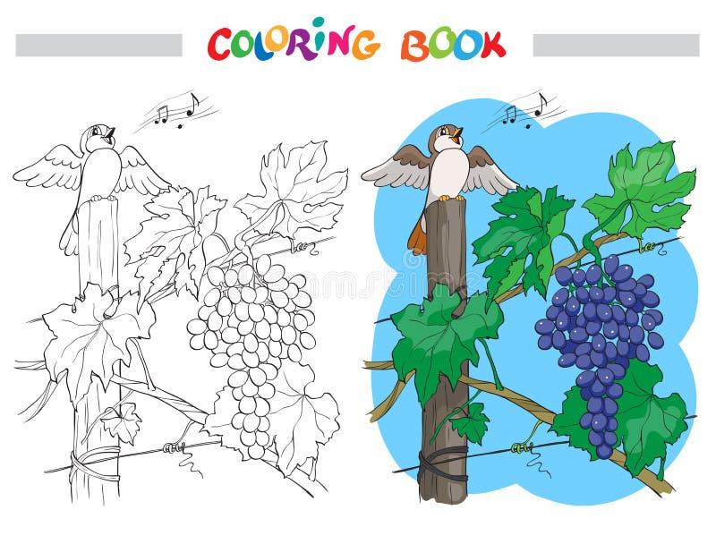 Svartvit vektortecknad filmillustration av gruppen av druvor med fågeln för färgläggningbok stock illustrationer