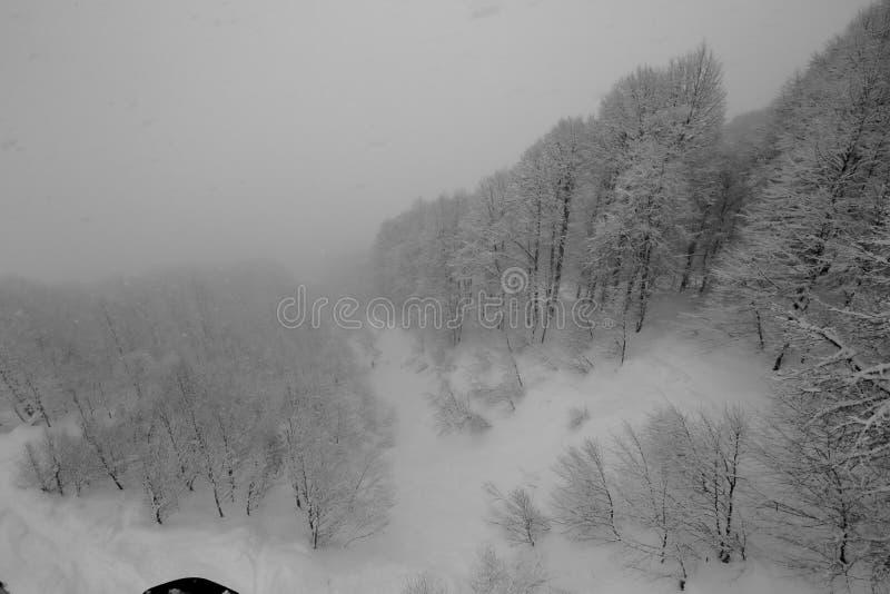 Svartvita fotografier av skidar lutningar, och elevatorer övervintrar in de snöig lutningarna av bergen under ett snöfall arkivbild