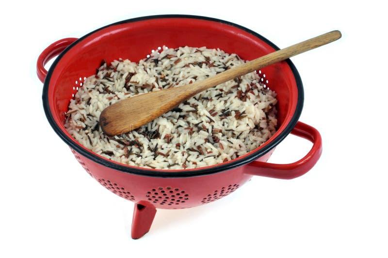 Svartvita ris i en durkslag royaltyfri foto